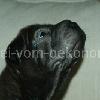 Kadriye12a_20091112