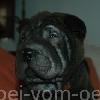 Kadriye4a_20091112