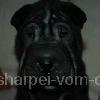 Keshia5a_20091112